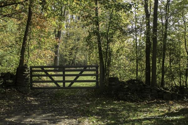 Gateway to Adventure by shutterbug8156