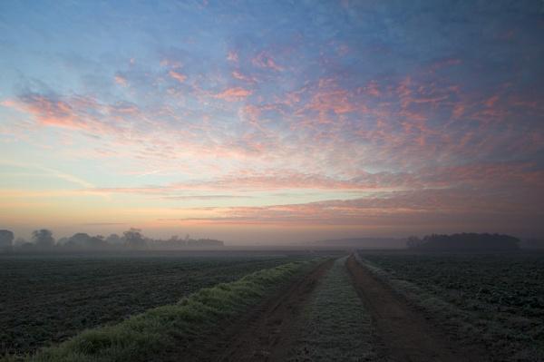 Fieldwalk at Sunrise by greenbabe