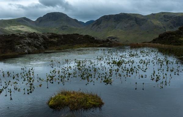 The Lake District by Osool