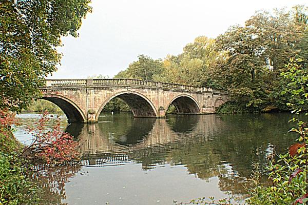 Clumber Park Bridge by cyprytinca