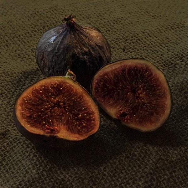 Fig Still Life by Irishkate