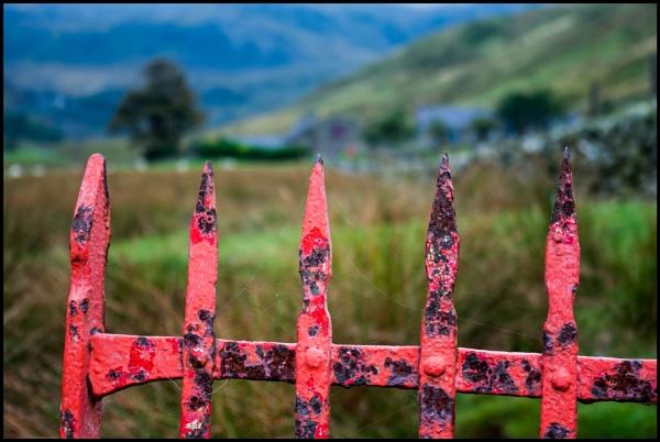 Field Gate in  Nant Ffrancon by bwlchmawr