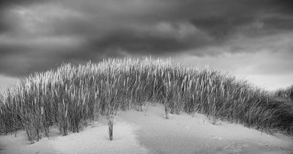 Grassy Mound by widtink