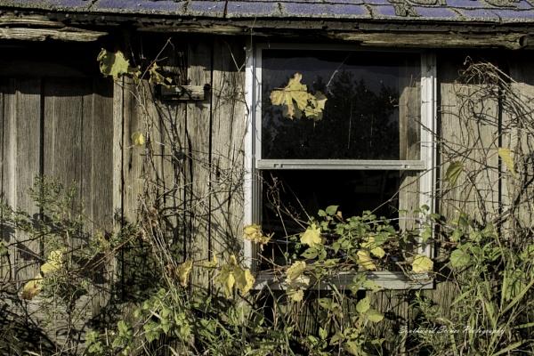 Broken Down by shutterbug8156