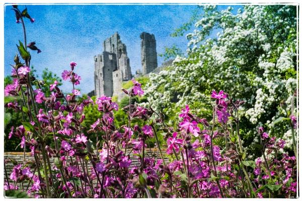 Corfe Castle by ChrisOs
