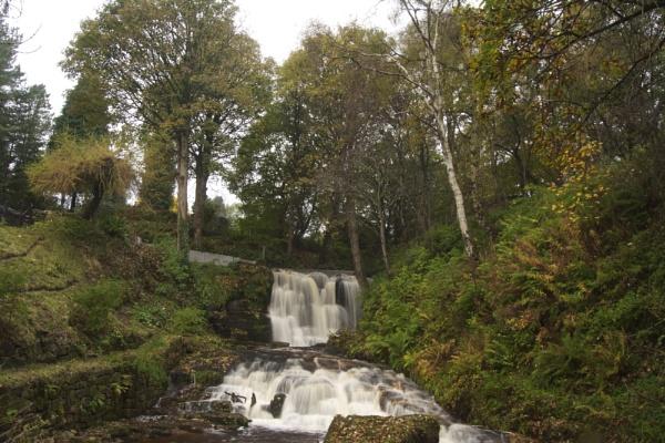 Garell Glen,Kilsyth, Scotland by wulsy