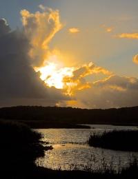 Evening Sun-Leighton Moss-Lower Hide