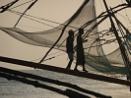Tending the Nets