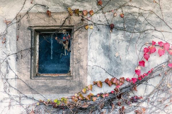 Rustic Autumn by mlseawell