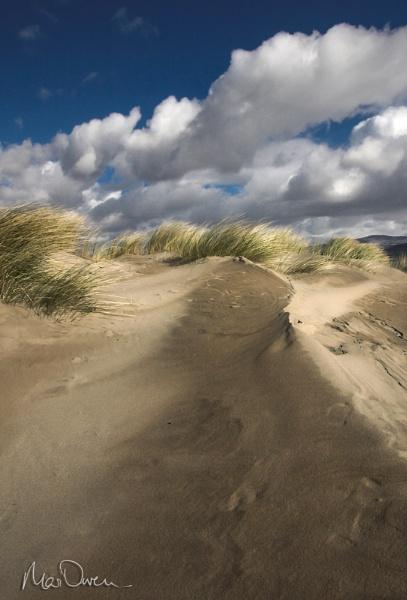 Dune by Mari