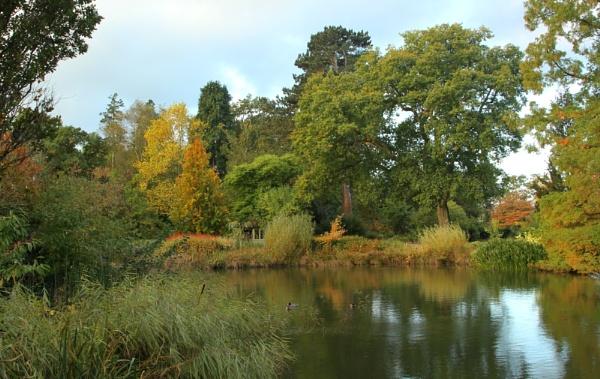 Wisley Gardens by SisterPinkie