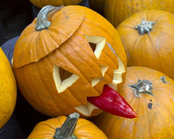 Pumpkin by victorburnside