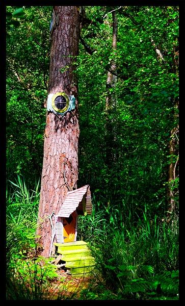 Boggle House - Bewilderwood landscape by hollkj