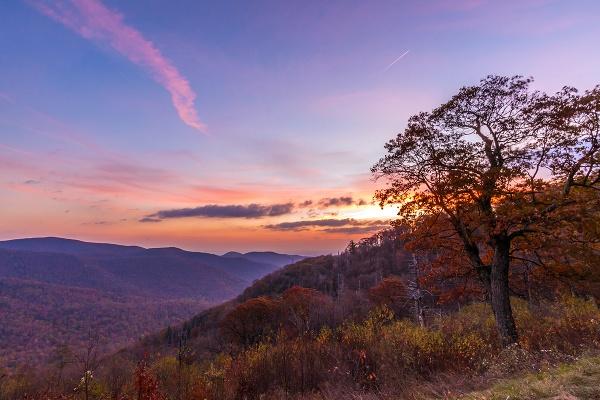 Autumn Morning by guitarman74uk