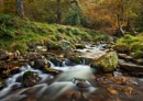 Glendalough in Autumn by garymcparland