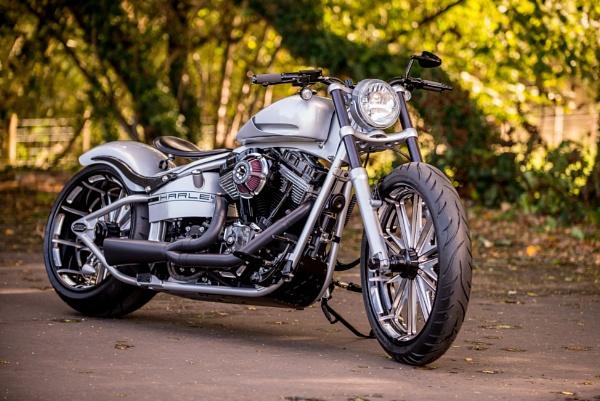 Custom built Harley-Davidson by ENGLISHSKIN