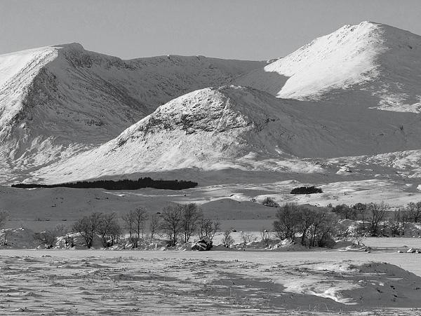 Blackmount , Scotland by david321