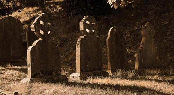 Living Dead ??? by reaper4252