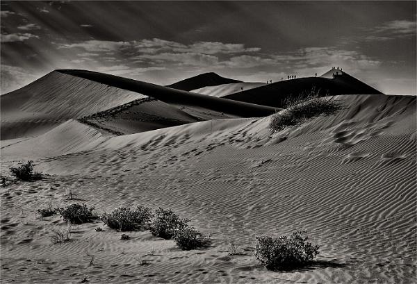 Namib Desert in mono by Daxiesmum