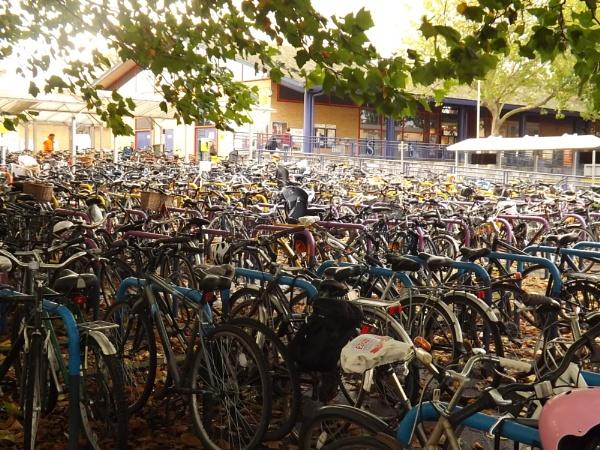 Think Bike by paulb2433