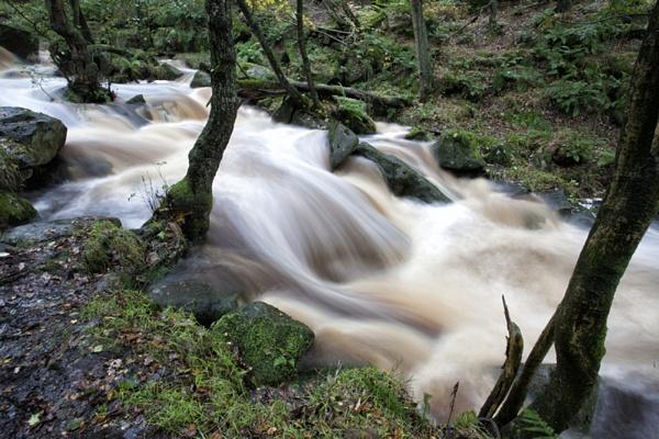 Burbage Brook by SteveCheetham