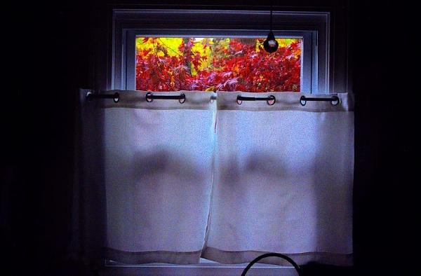 Side Window by DonSchaeffer