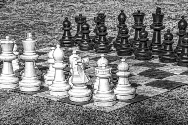 Garden Chess by SueLeonard