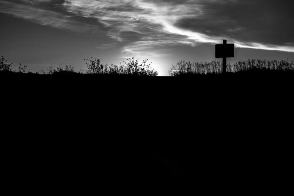 Silhouette in the desert by SueLeonard