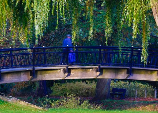 King\'s park-The bridge by xwang