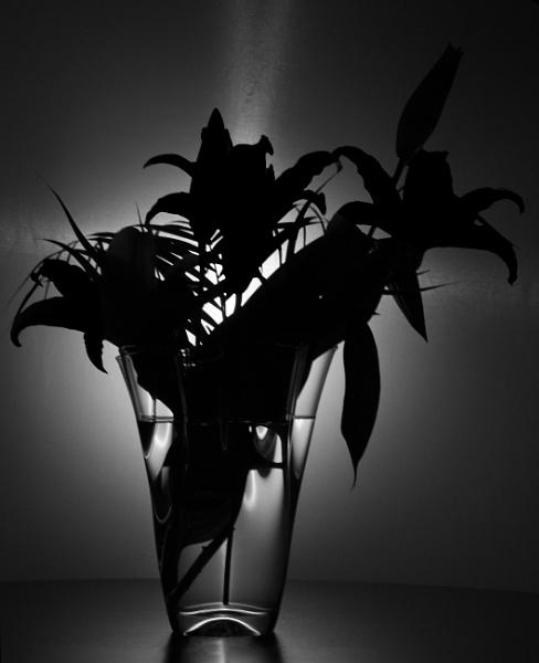 Vase by billcoa