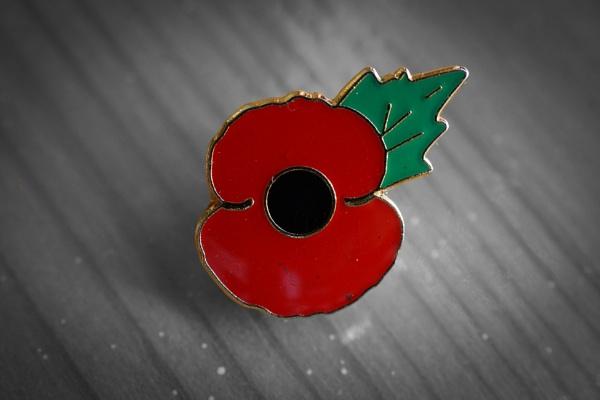 346 Armistice Day by Seonaid