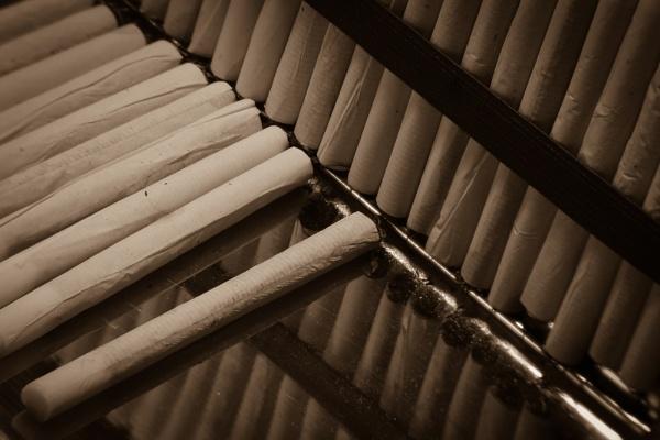 347 Roll ups by Seonaid