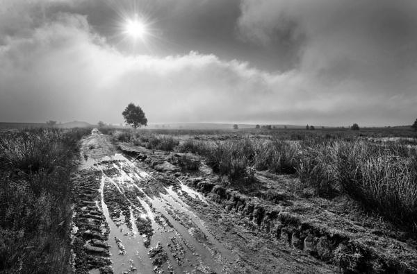 Tracks of Light by Trevhas