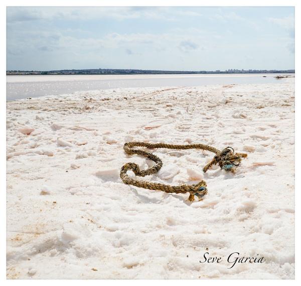 serpiente de la sal by SeveGarcia