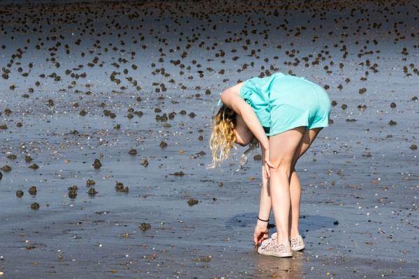 Beachcomber by EZRider21