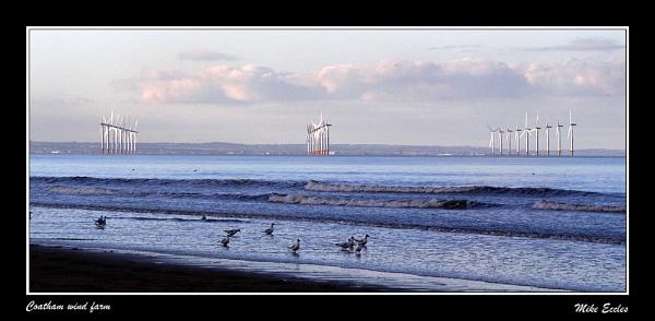 Coatham wind farm by oldgreyheron