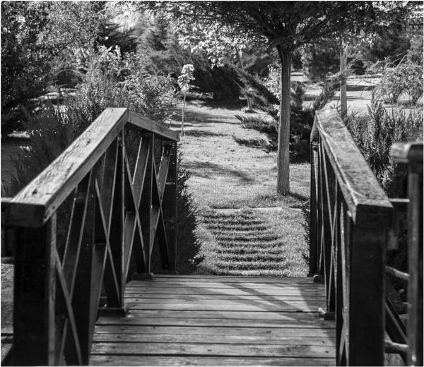 Bridge by nonur