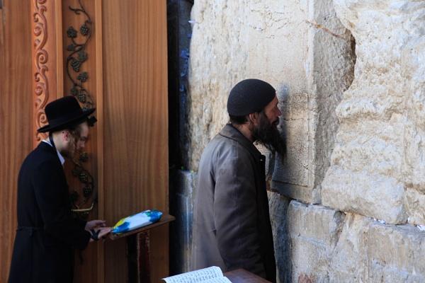 Piety (Jerusalem 2013) by davetac
