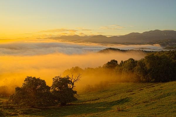 Mist by Escaladieu