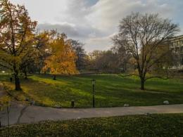 Vienna's Garden.