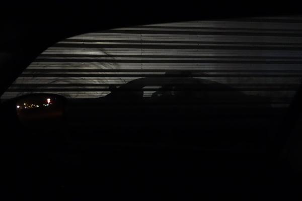 shadow guardian by wm