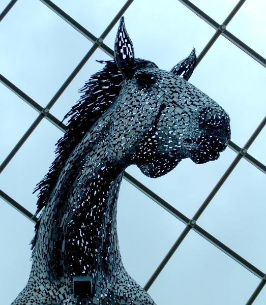 Equus Altus by Philip_H
