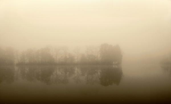 On a foggy november morning 2013 by YNOR
