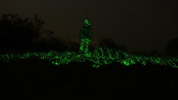 laser legoben