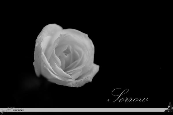 Sorrow by Abhinow