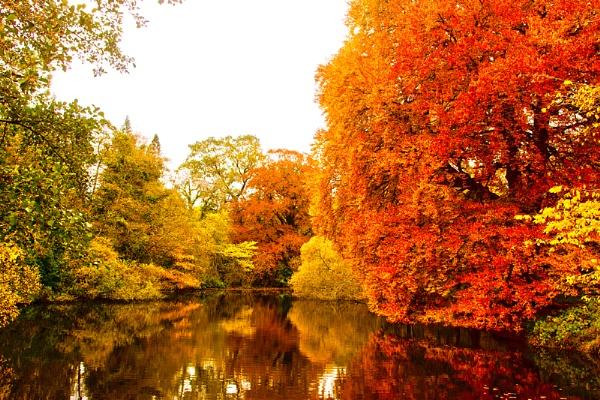 Autumn Fire by motorsportphoto