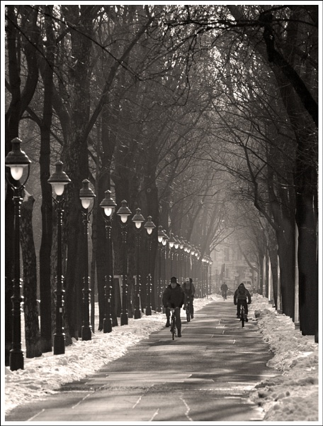 Winter cyclists by Nothern_Licht