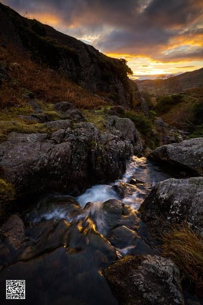 Downstream Dawn