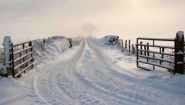 Creevagh Lane by Declanworld