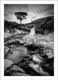 Fave Waterfall Mono